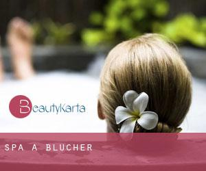 Spa à Blucher
